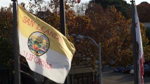 SL Flag with Smart Street Light